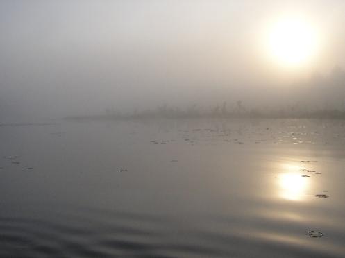 fogandwater.jpg